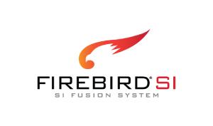 Debbie Irwin Voiceovers Firebird SI Logo